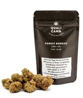 QUALICANN Forest Berries 1.6g